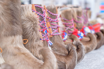 Traditional sami handmade footwear from reindeer fur