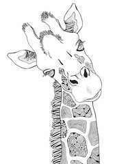 Coloring Book page for Adult and children. Giraffe