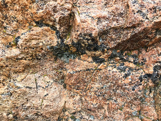 The texture of the stone.