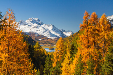 Europe, Switzerland, Grisons. Autumnal landscape of Saint Moritz in Swiss Alps, Engadin