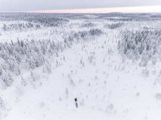 Drone image of snowmobile in snow covered landscape, Finland
