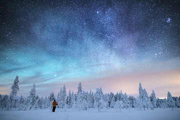 Stars in sky above snow covered trees, Finland