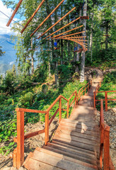Rope adventure park in summer forest of Caucasus Mountains. Wooden stairs lead downstairs. Scenic sunset vertical landscape