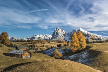 Alpe di Siusi/Seiser Alm, Dolomites, South Tyrol, Italy. Autumn colors on the Alpe di Siusi/Seiser Alm with the Sella, Sassolungo/Langkofel and the Sassopiatto/Plattkofel in the background