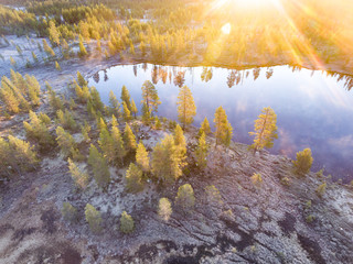 Lake with trees in sunlight, Finland