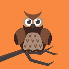 Cute modern bright cartoon owl expression animal character comic funny doodle behavior bird and little colorful emotion humor eyes wide face vector illustration.