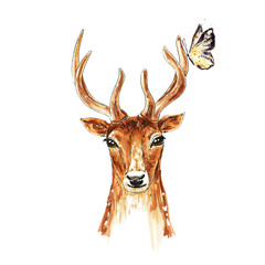 Hand drawn illustration of deer. Butterfly on the horns. Greeting card