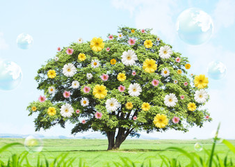 Tree covered with flowers