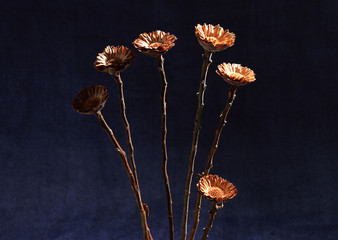 Dried Flower