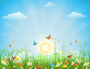Summer meadow background with flowers, butterflies and green grass