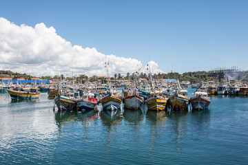Fishing boats in harbor.