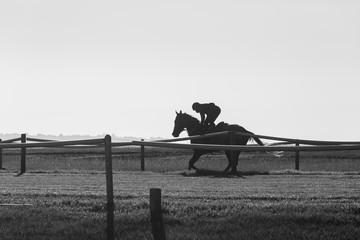 Race Horse Jockey Training Black White