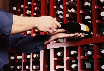 Male sommelier choosing wine in cellar