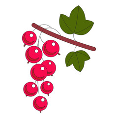 Illustration of red currant isolated on white.
