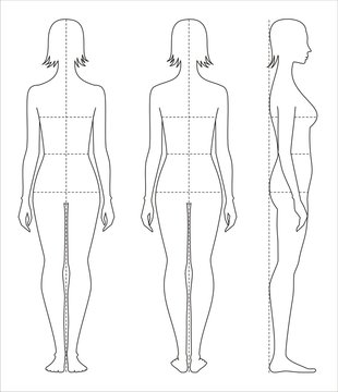 Women's body measurements