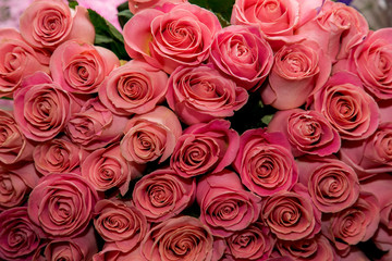 A lot of pink roses bouquet flowers