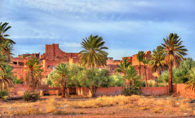 Palm grove at Ouarzazate, Morocco