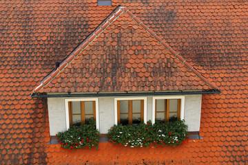 Rooftop, Rothenburg ob der Tauber, Germany