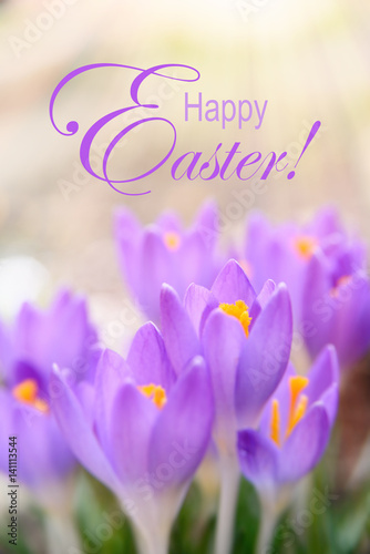 Happy Easter Vertical Banner With Spring Flowers Background