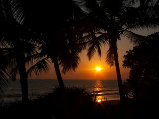KERALA, INDIA. Red sunset and silhouettes of palm trees on the beach.  Chowara, Kerala, South-west India.