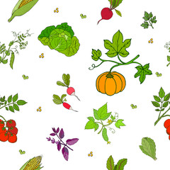 Vector seamless pattern of hand drawn fresh vegetables