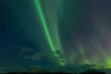 the northern lights as seen in Iceland