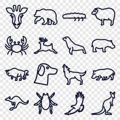 Set of 16 wildlife outline icons