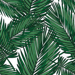 phoenix palm seamless tropical background