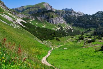 Wall Mural - Hiking in the mountains. Austria travel, Achensee Area, Tirol