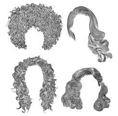 set of  different curly hairs .