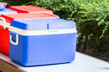 ice chest or Handheld refrigerator