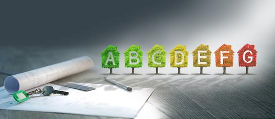 projet immobilier ,arbre,écologie