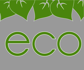 frame of green leaves around labels eco