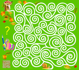 Logic puzzle game with labyrinth. Need to draw the way from the snail, till the  mushroom. Vector image.