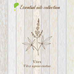 Pure essential oil collection, vitex. Wooden texture background