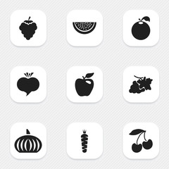 Set Of 9 Editable Fruits Icons. Includes Symbols Such As Papaya, Honeycrisp, Radish And More. Can Be Used For Web, Mobile, UI And Infographic Design.