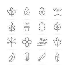 leaf vector line icons