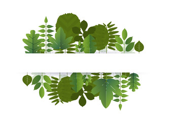 Banner of leaf blank center space for text. vector illustration.