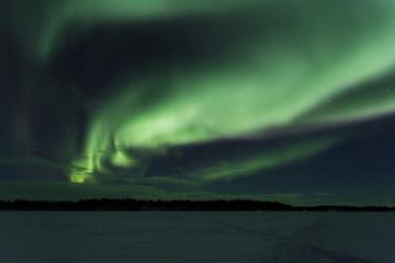 Aurores lapones - aurores boréales - Laponie - Suède - Europe