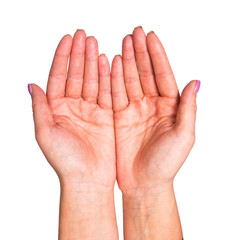 Hands on a white background in a turn palms.