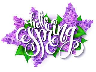 vector illustration of hand lettering - hello spring on a background of blooming lilac branches