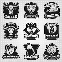 Vintage Team Sport Logos Collection