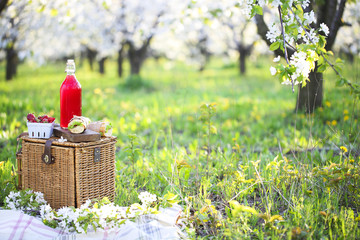 Basket, sandwiches, plaid and juice in a blossoming garden