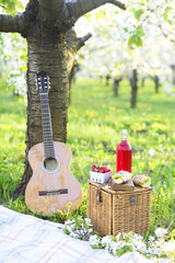 Guitar, basket, sandwiches, plaid and juice in a blossoming garden