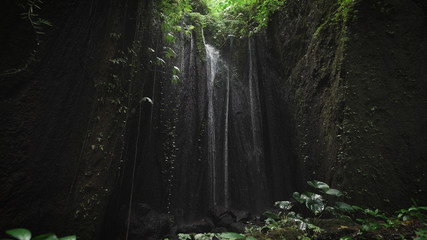 Calm view of a dark cave in the round hole of which falls down, the water which splashes falling on plants, blooming at the bottom