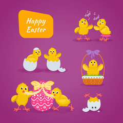 Lovely chickens have fun, celebrate, indulge, in Easter, run, fly.