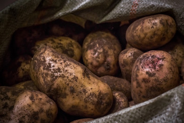 potatoes in a bag on the counter in the sale