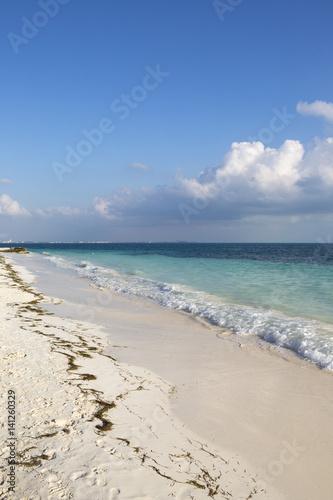 Beautiful Beach Of The Caribbean Sea Tropical Wallpaper Vertical Image