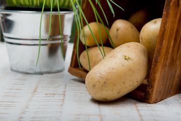 kartoffel mit dill