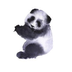 Bear the panda. Isolated on white background.